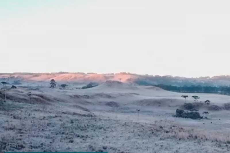 Geada cobriu de branco campos em Santa Catarina (Foto: YouTube/Reprodução)