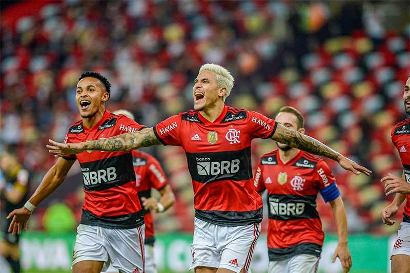 Pedro marcou um dos gols do Flamengo sobre o Grêmio (Foto: Marcelo Cortes/CRF