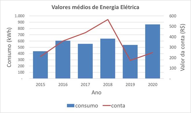 Média anual de consumo e valor da conta na residência de Danilo (Foto: Arquivo Pessoal)